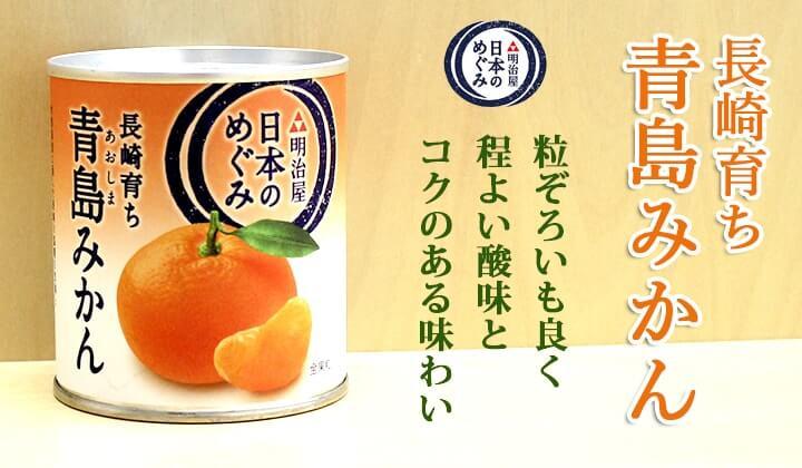日本のめぐみ 長崎育ち青島みかん 缶詰通販の専門店mr.kanso