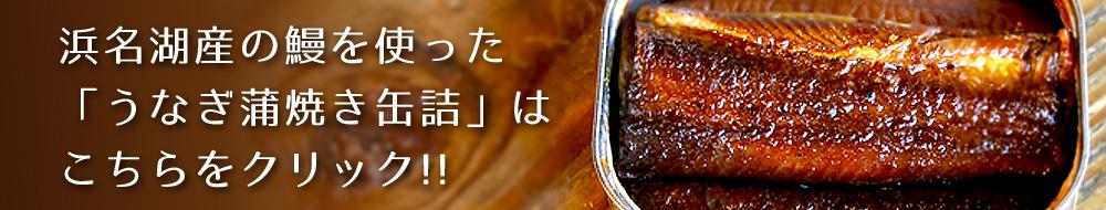 うなぎ蒲焼き缶詰